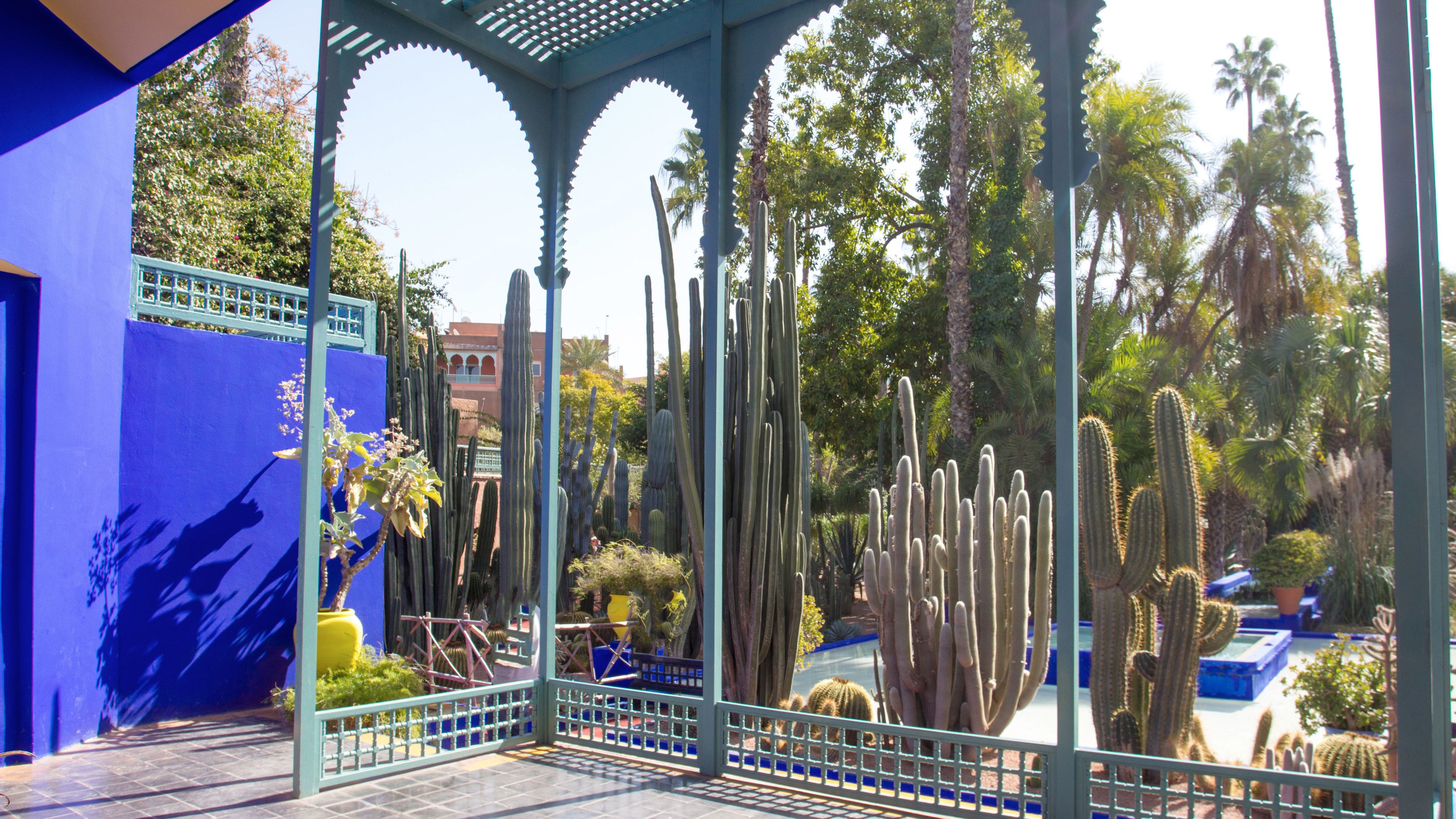 Vew inside the renowned Majorelle and Menara gardens in Marrakech