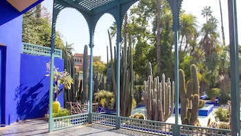 Show item 3 of 5. Vew inside the renowned Majorelle and Menara gardens in Marrakech