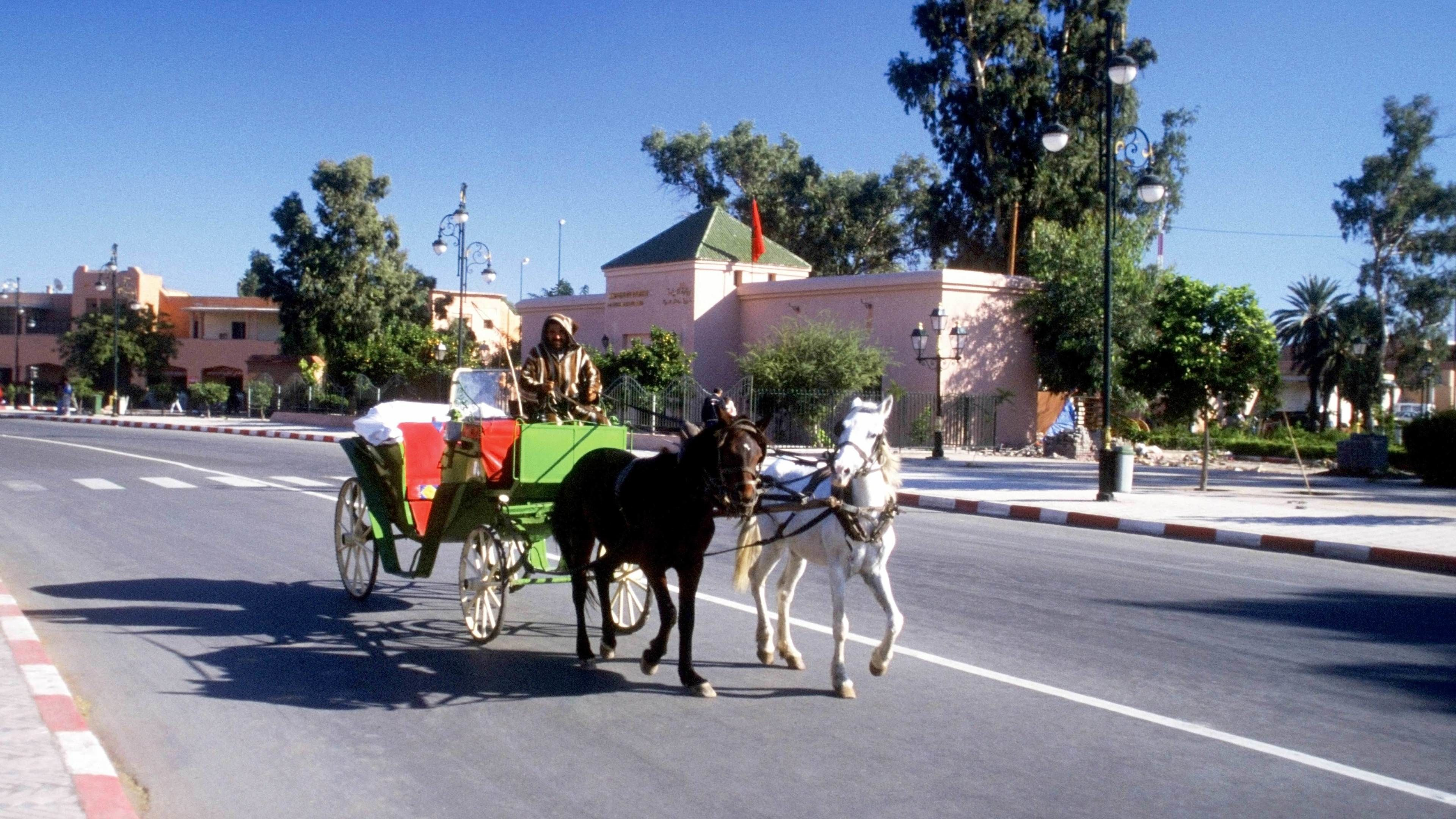 Horse-drawn carriage ride during the sunny day in Marrakech