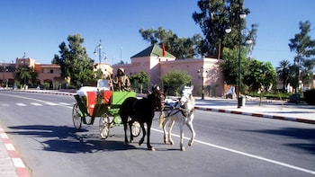 Show item 5 of 5. Horse-drawn carriage ride during the sunny day in Marrakech