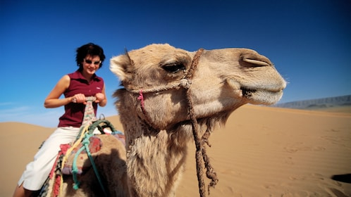 Woman next to a camel in Marrakech