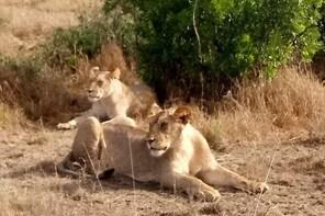 Unique Samburu - 3 Days