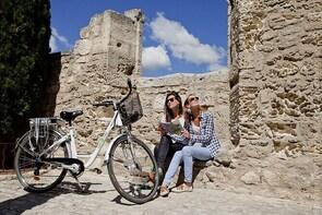 Provence and the Carrieres de Lumieres by E-Bike from Saint-Rémy-de-Provenc...