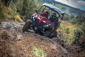 ATV's Side by Side