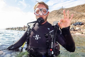 Refresh Dive for Certified Divers