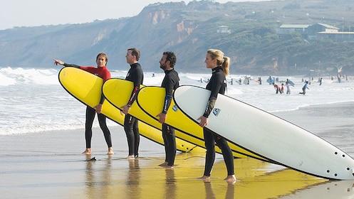 Surfers on the beach in Australia