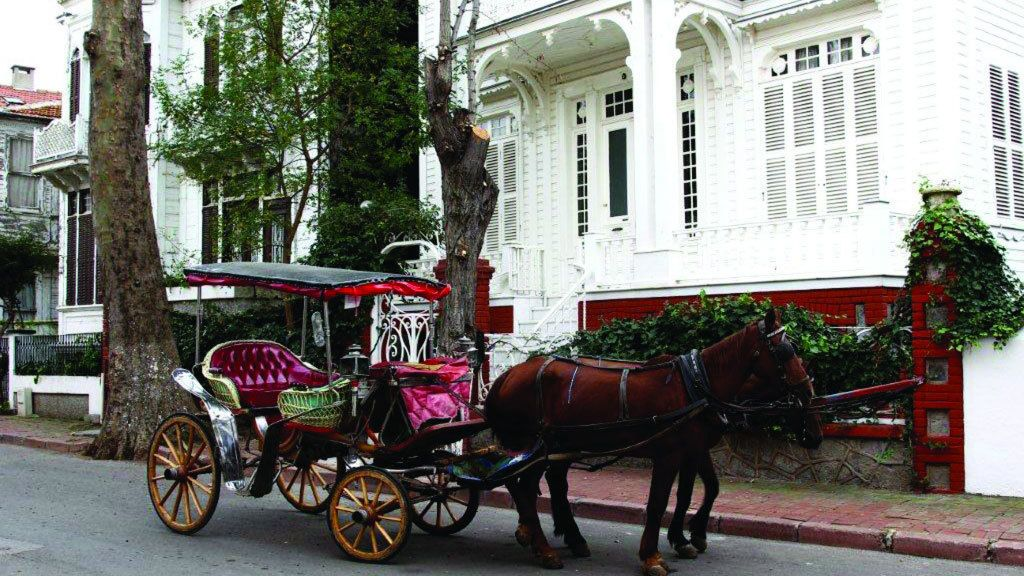 Horse-drawn carriage in Istanbul