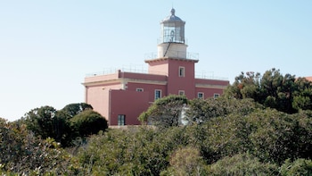 Lighthouse Tour