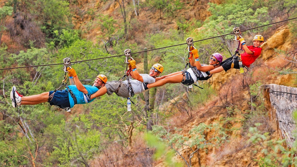 Show item 1 of 10. Family linked together while ziplining in Los Cabos