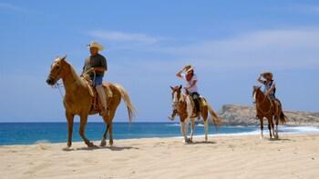 Pacific Beach Horseback Riding