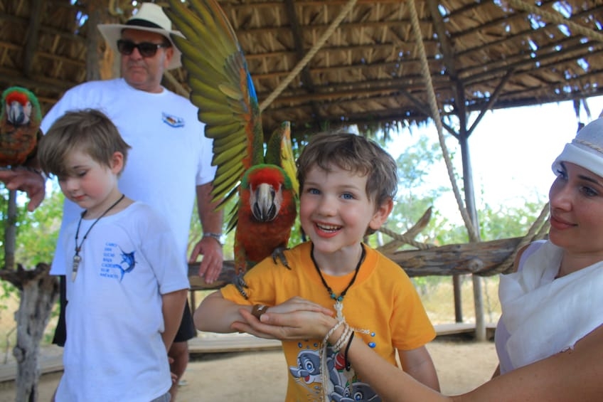 Camel Adventure, Snacks & Drinks and Water-slides