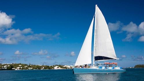 Catamaran with sails raised in Bermuda