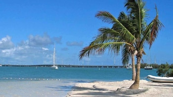 Key West Day Trip & Glass Bottom-Boat Tour from Miami