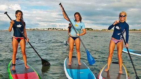 Paddle boarding group in Los Cabos