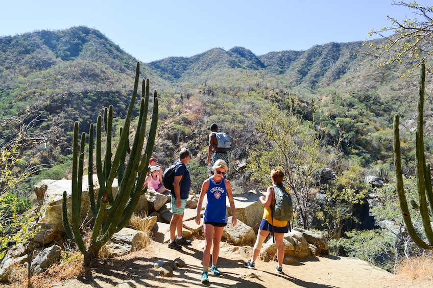 Show item 4 of 10. Fox Canyon Hiking