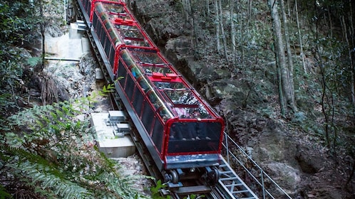 taking the tour passenger train through the wilderness in Australia