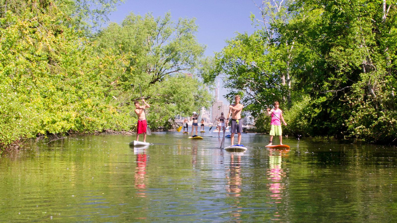paddleboarders visiting the Toronto Island