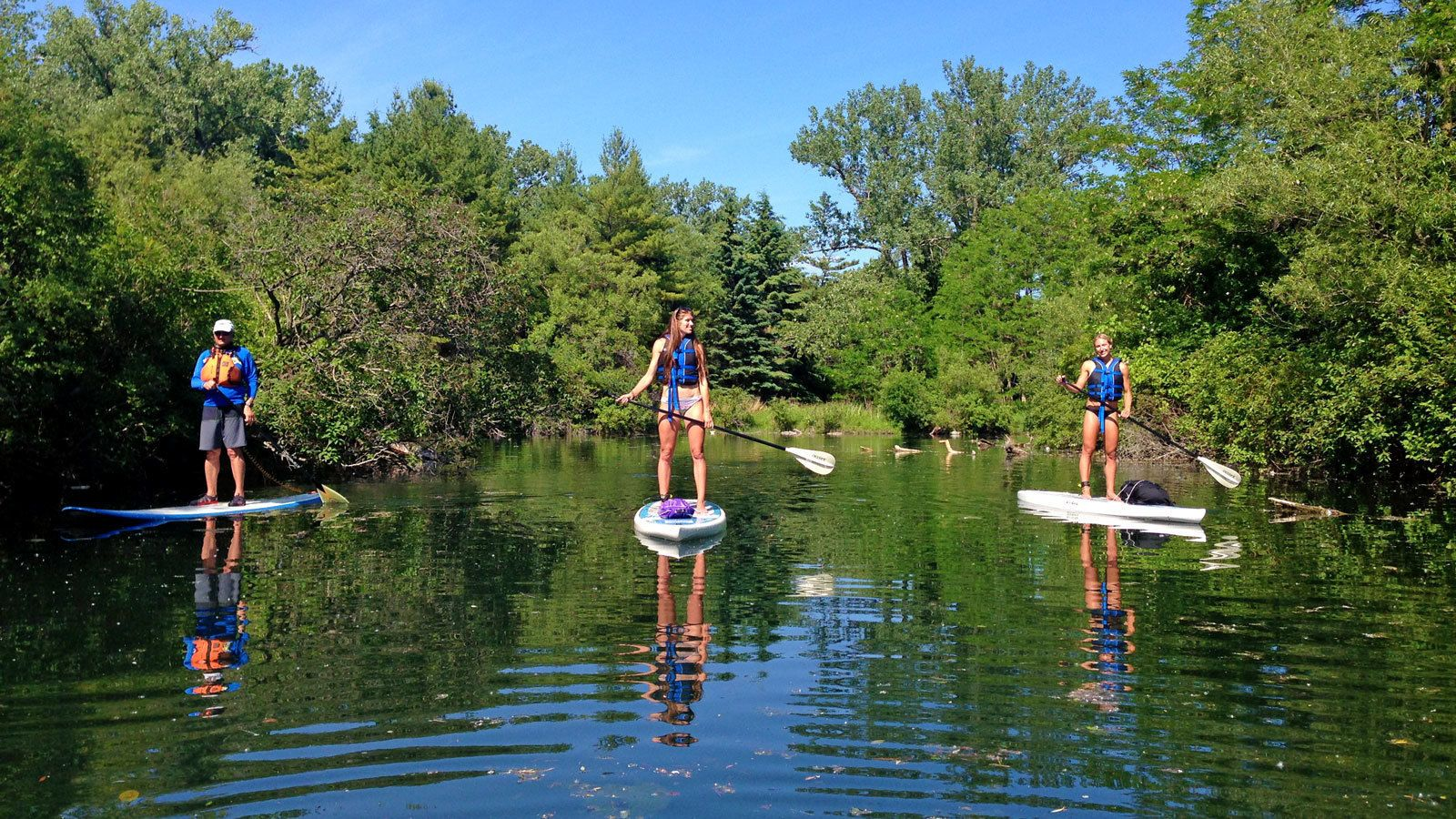 three paddleboarders on still water in Toronto