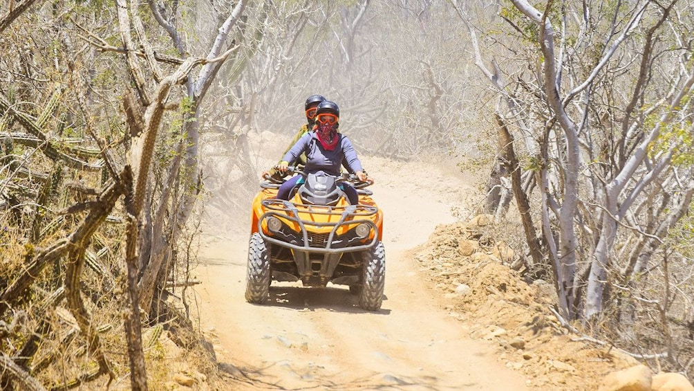 Show item 3 of 10. Cabo Baja Discovery ATV Adventure