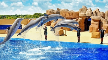Marineland Zoo & Water Park Day Trip