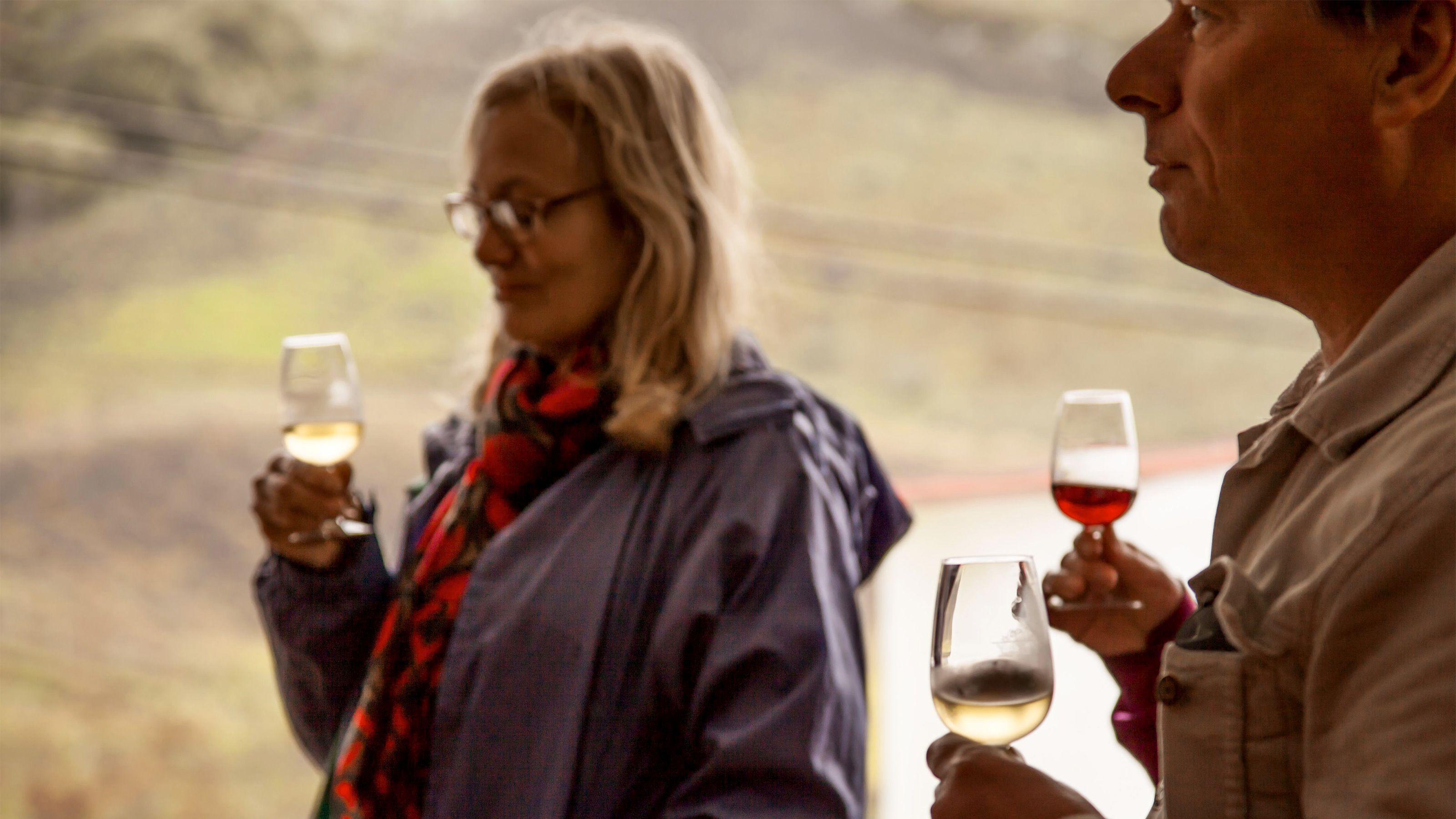 Nordkyst-tur med vinsmaking og kaffeplantasjer