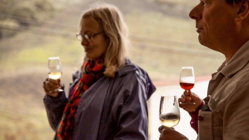 Foto 1 von 10 laden Wine tasting group in Gran Canaria