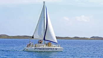 Freebird Catamaran Tour to Isla de Lobos