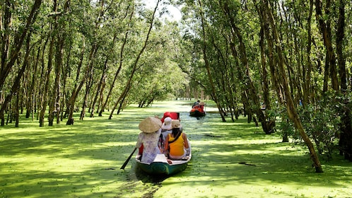 Tour groups in sampans on a canal through a forest in the Mekong Delta
