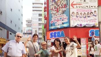 Visita de medio día a Akihabara