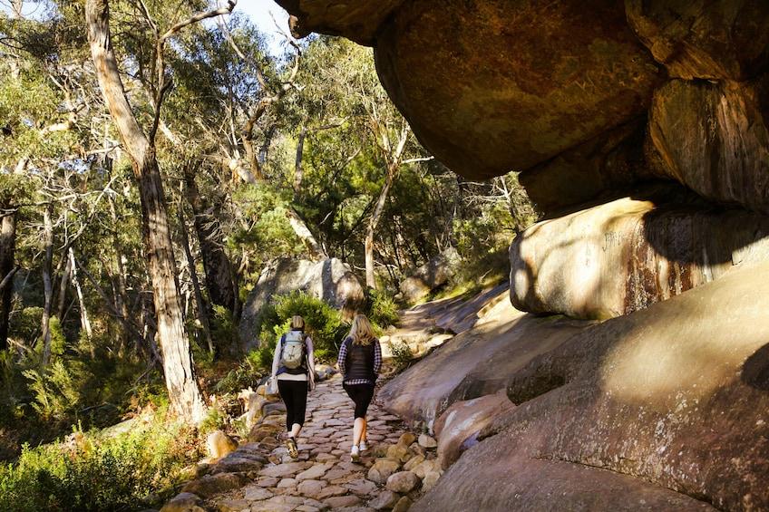 Small Group Grampians National Park & Kangaroo Trek