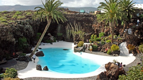 Landscaped pool in Lanzarote