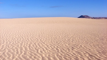 Full-Day Trip to Fuerteventura's Sand Dunes from Lanzarote