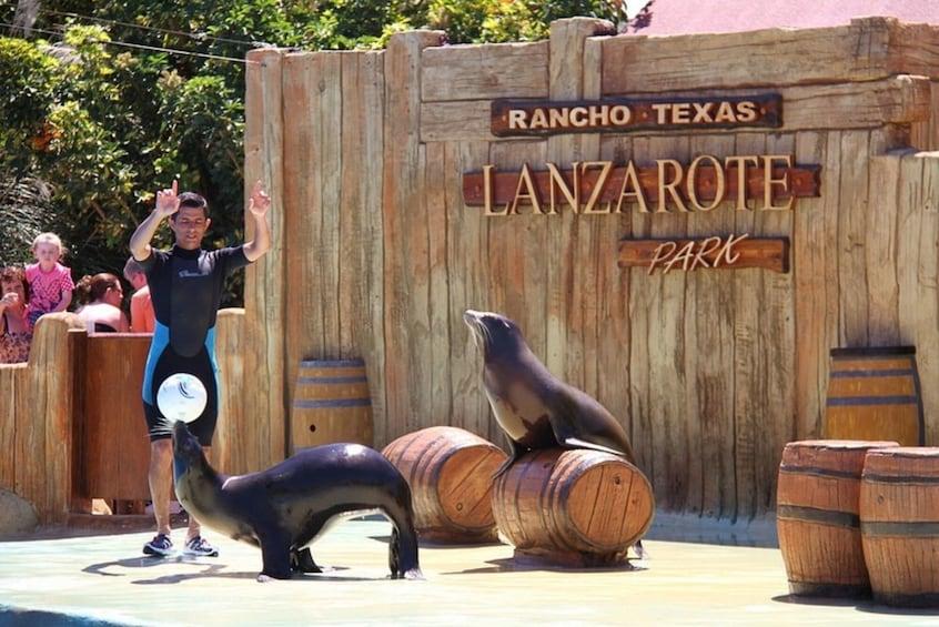 Show item 4 of 10. Rancho Texas Lanzarote Park Admission