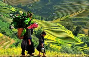 7 Days Hanoi, Sapa, Ninh Binh & Halong