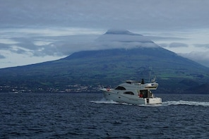 Rodman motor yacht charter in the Azores in Faial