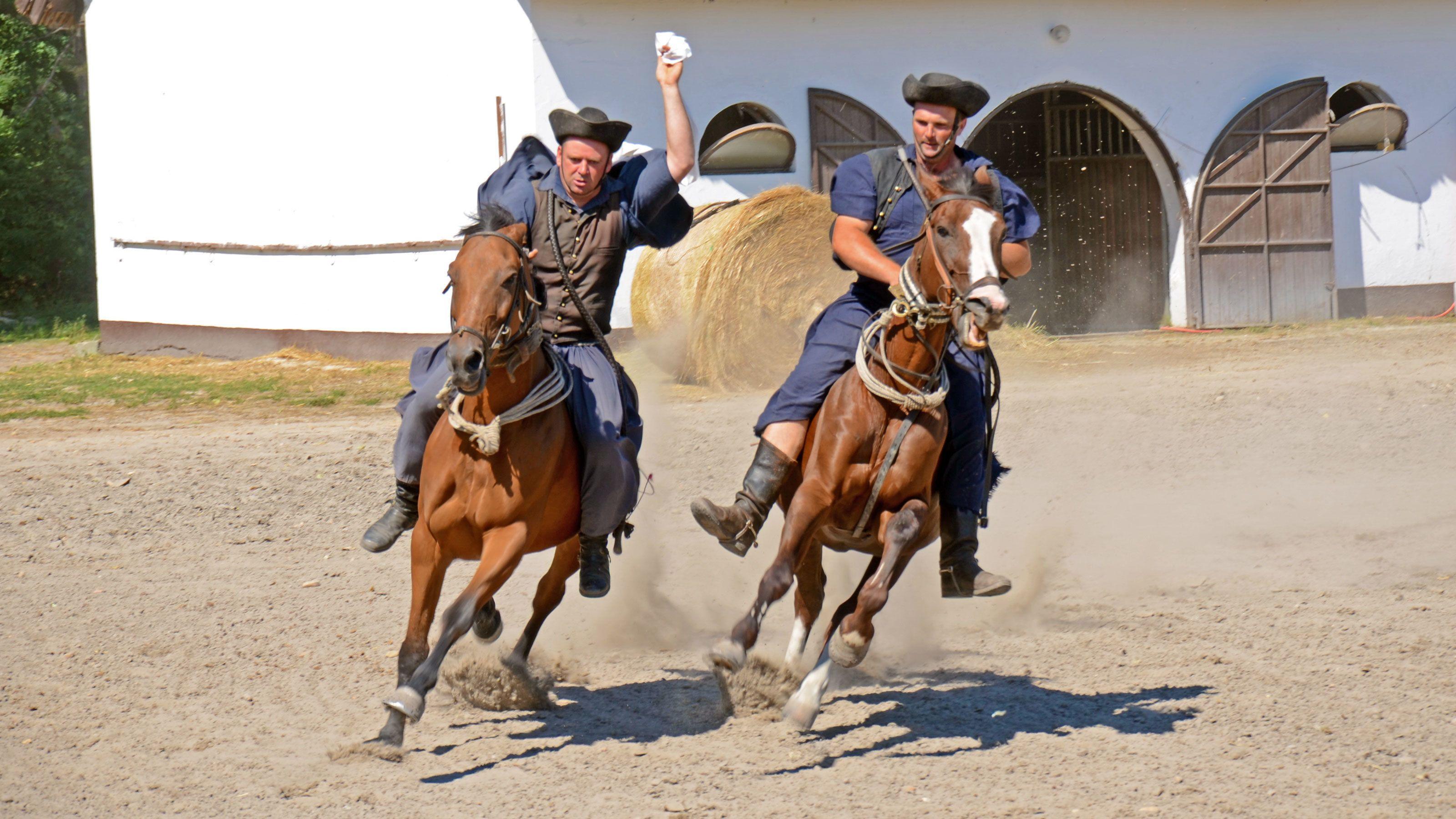 Udflugt til Den Ungarske Slette med hesteshow og frokost