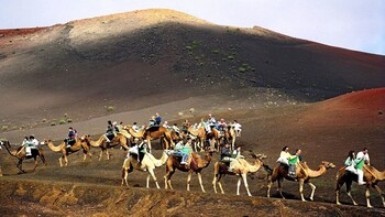 Camel Ride Experience in the Arteara Valley