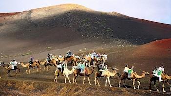 Salida para montar en camello en el valle de Arteara