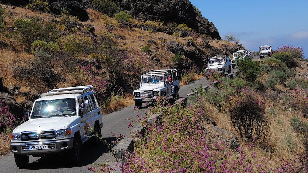 Show item 1 of 5. Line of jeeps on a hillside road in Gran Canaria