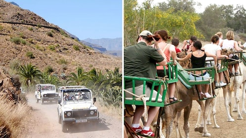 Combo image of 4x4 Safari & Camel Ride in Gran Canaria