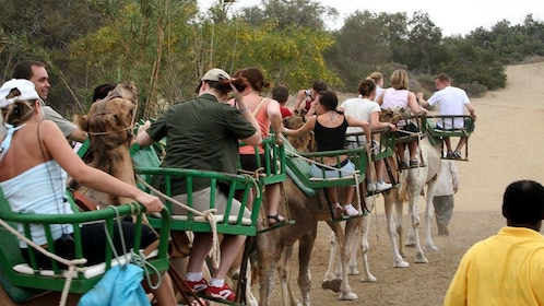 Tourists riding camels on a dirt path in Gran Canaria