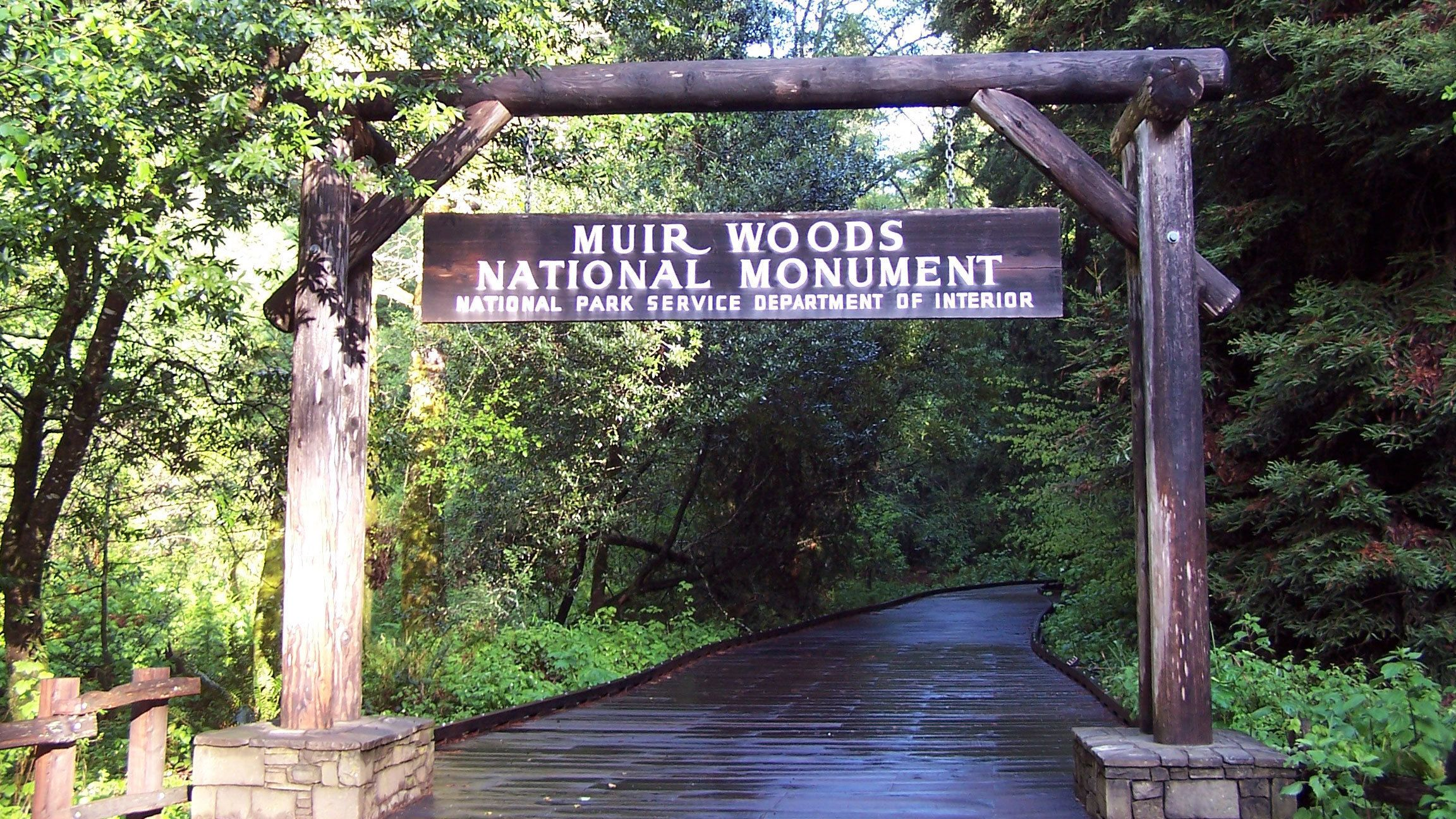entering the Muir Woods through a wooden path in San Francisco