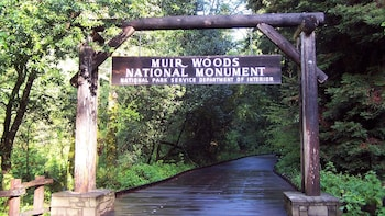 Muir Woods Tour of California Redwoods (Ticket fee included)