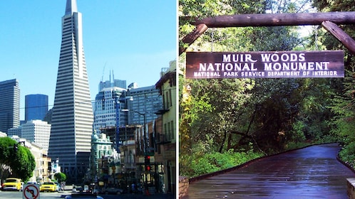 Combo image of City sightseeing and Muir Woods National Monument entrance