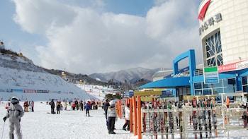Yongpyong Resort Ski Package with Transportation