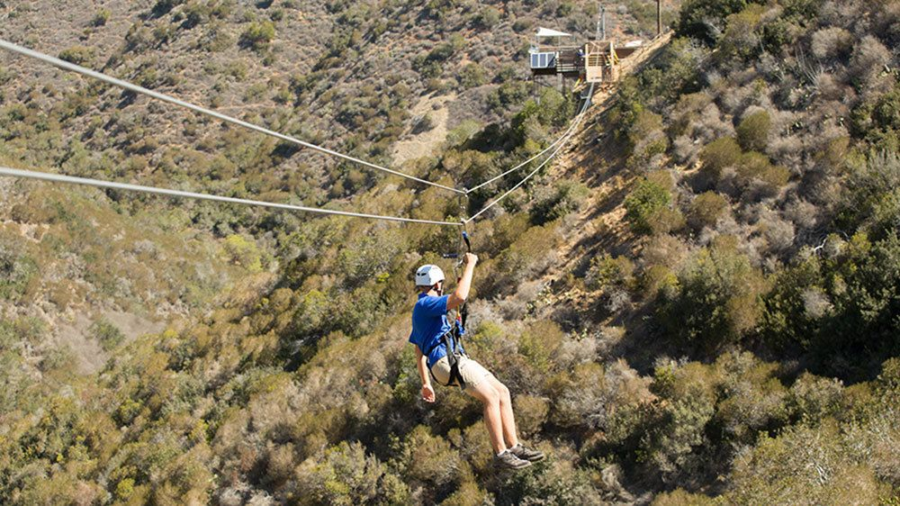 Zipling man high over the trees on Catalina Island
