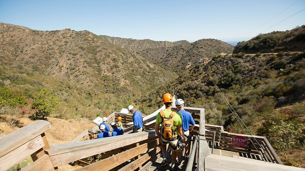 Ziplining group walking down a wooden staircase in the hills of Catalina Island