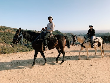Hollywood Horseback Tour with roundtrip hotel transfers