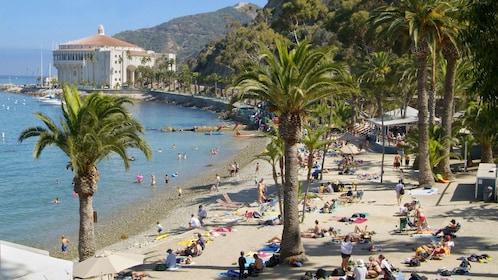 beachgoers enjoying the sun near the Catalina Island Casino