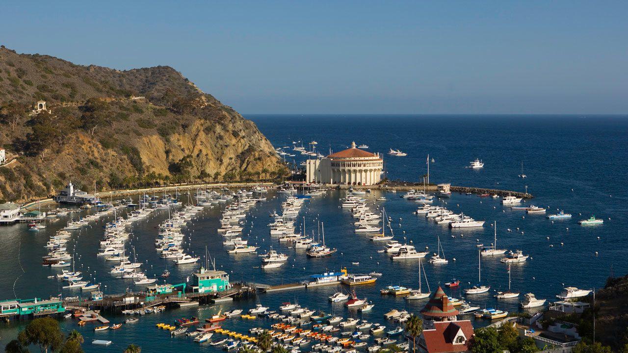 boats docked at the bay near the Catalina Island Casino in Los Angeles